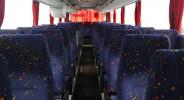 Neoplan 316 (083) - фото транспорта