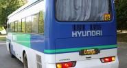 Hyundai Aero Town (351) - фото транспорта