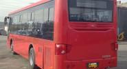 HIGER (115) - фото транспорта